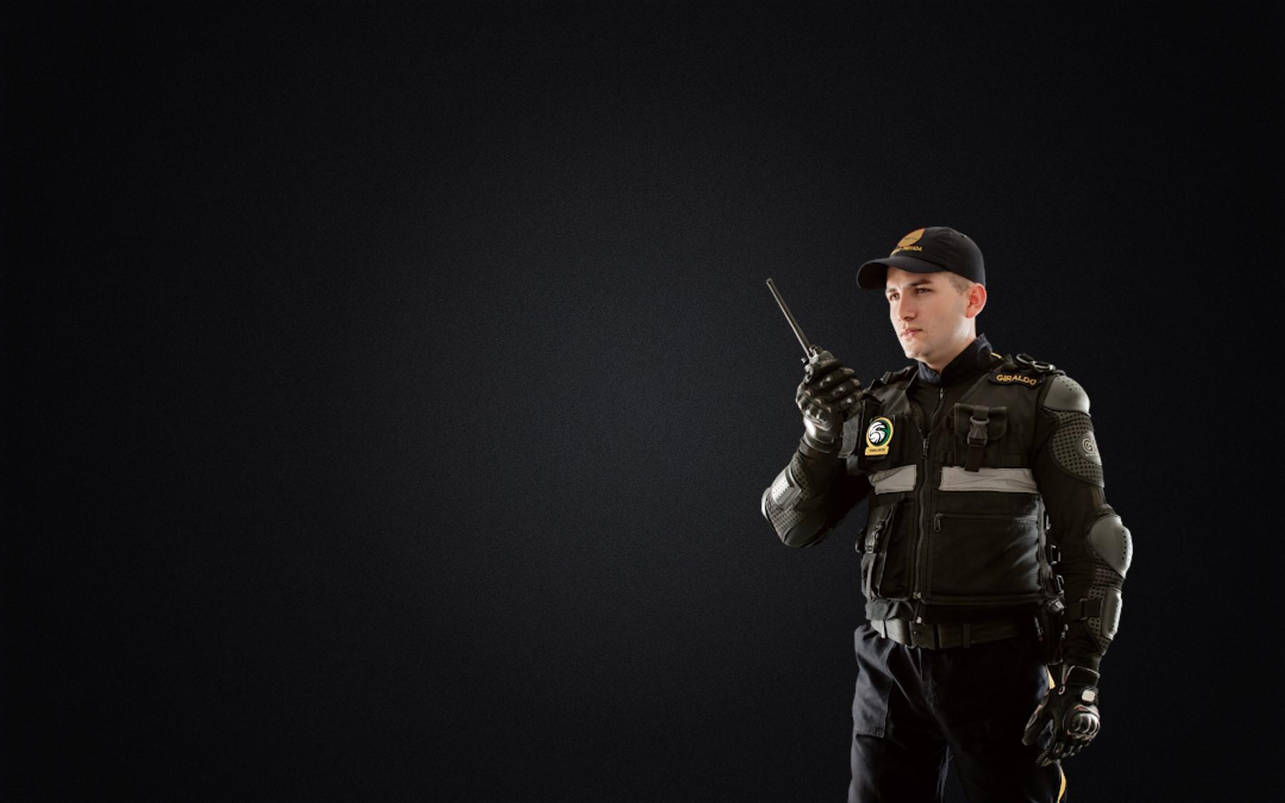 Brindamos Seguridad Integral